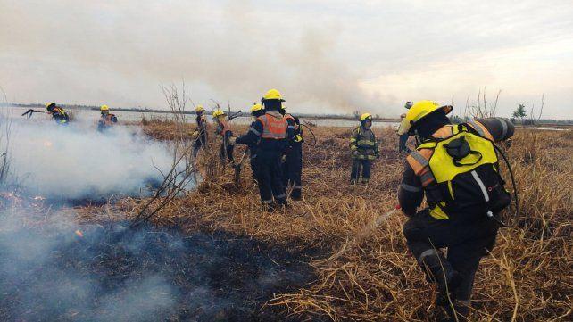 Crece la preocupación en la provincia por la gran cantidad de incendios intencionales
