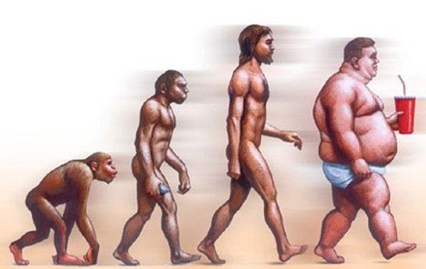 El mono obeso. Los deportólogos impulsan el paradigma de la actividad física y la dieta saludable en oposición al del sedentarismo y la comida chatarra.