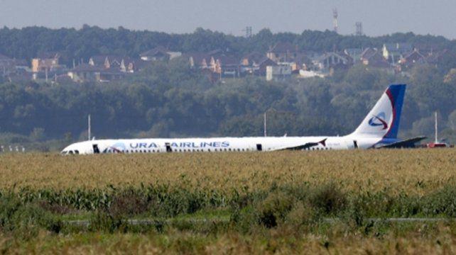 Vivir para contarla. El avión A321 de Ural Airlines aterrizó en un maizal cercano al Aeropuerto Zhukovsky.