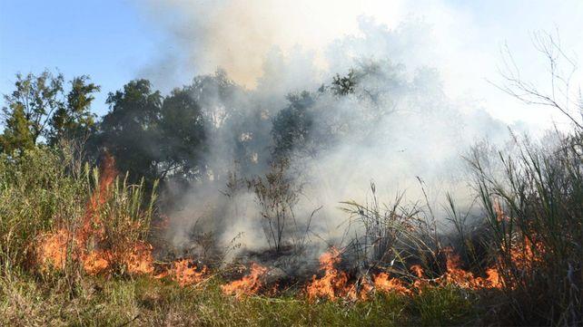 Los últimos incendios se registraron en la zona de Villa Constitución y San Nicolás. (Foto de archivo)