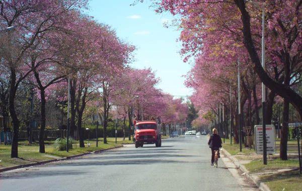La ciudad de Funes cuenta con un solo establecimiento secundario público.