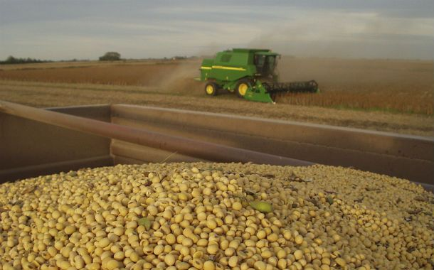 Los productores están problemas por el bajo precio de la soja.