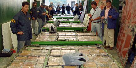 Secuestran 1.100 kilos de cocaína valuados en 25 millones de euros