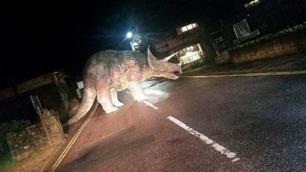 El modelo de dinosaurio proviene de la tienda de fósiles Island Gems