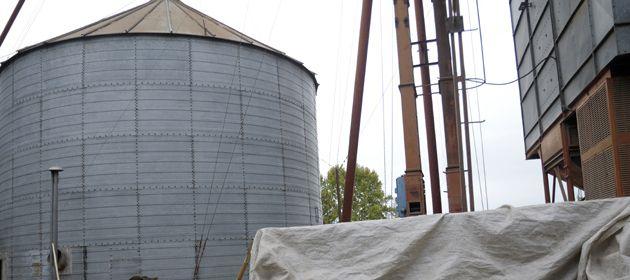 Con una capacidad de molienda de granos oleaginosos que casi se duplicó desde 2003