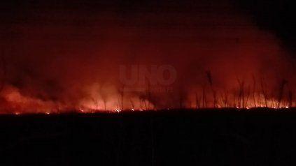 Incendios en las islas santafesinas durante 2020.