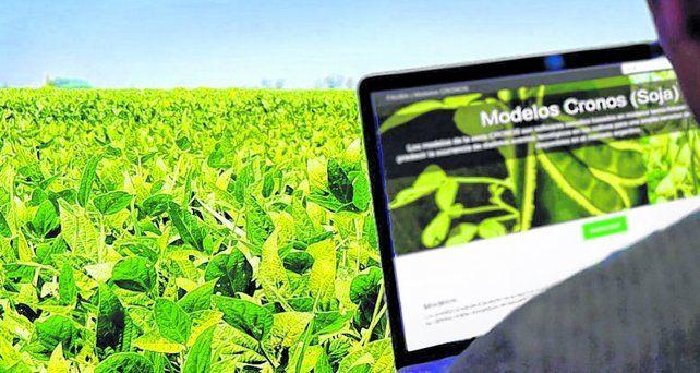 Campaña gruesa. La siembra de soja avanzó rápidamente en la región central del país.