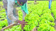 La producción agroecológica permite superar losconflictos en la zona fronteriza entre lo urbano y lo rural,