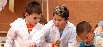 La ley provincial de educación no figura en la agenda oficial de 2008
