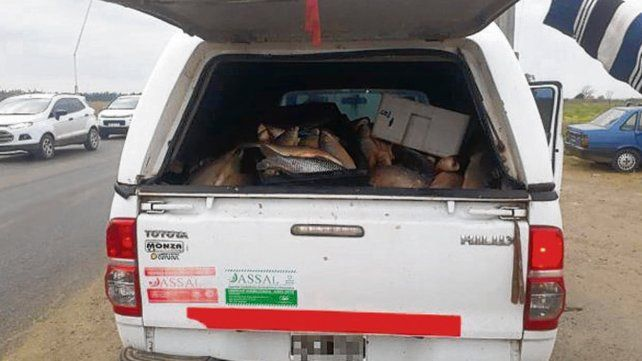 En la ruta provincial 21. Uno de los vehículos con la carga decomisada.