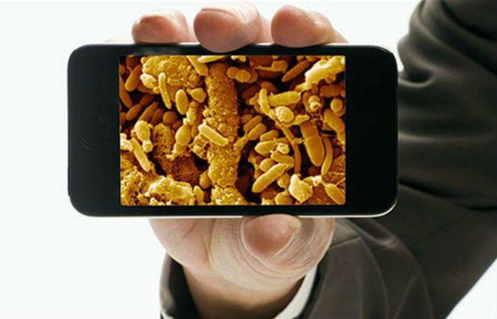 Las pantallas de los smartphones pueden contener hasta 600 bacterias