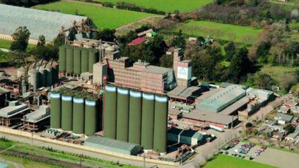 La planta de Molino Cañuelas, la principal empresa productora de harina de la Argentina, que entró en convocatoria de acreedores.