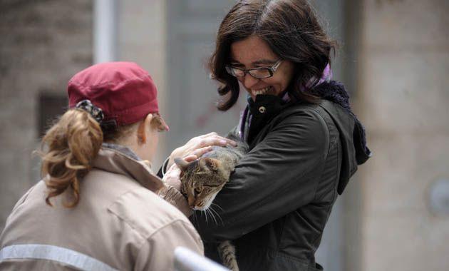 La dueña se reencontró hoy con su gatita y recuperó la sonrisa