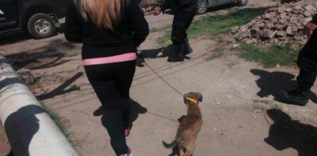 La cachorra maltratada que buscaba hogar y ahora vive en la casa del comisario Diego Santamaría.