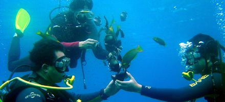 Viaje a las profundidades