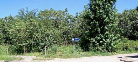 El municipio de San Lorenzo llevará a la Justicia el conflicto por un predio