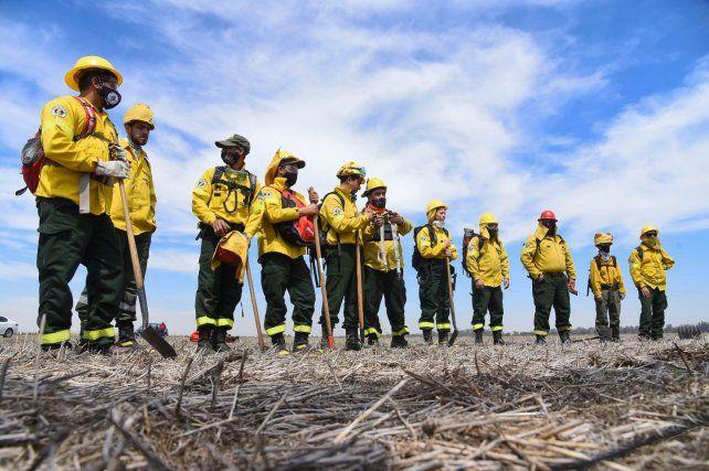Ya sin fuego en el Delta, vuelven a reclamar que la Justicia investigue las quemas