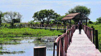 Pasarela. La reserva cuenta con una infraestructura pensada para disfrutar del espacio natural alterando lo menos posible el entorno de lagunas, montecitos y vegetación autóctona.