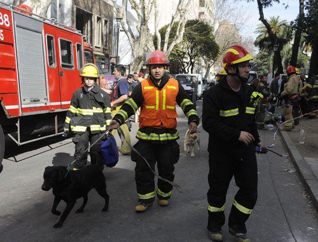 Los canes siguen trabajando intensamente junto a los rescatistas. Foto: G. de los Ríos.