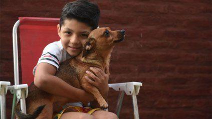 Benjamín Biñale junto a su perrito. El niño pudo sufrió una herida grave en la cabeza y pudo salir adelante.