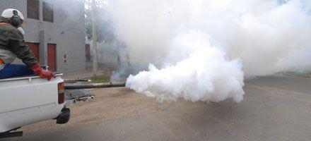 Dengue: hay 18 casos autóctonos y llegan operativos al oeste y noroeste