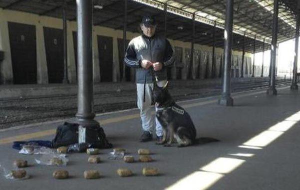 Un perro adiestrado detectó que en la mochila de un joven había estupefacientes.