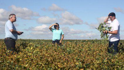 Una biosolución le devolvió hectáreas donde antes no crecía nada