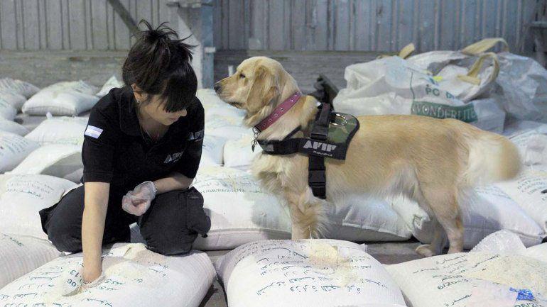 Agentes de Afip-Aduana hallaron la carga de cocaína mezclada en arroz en un galpón de la zona oeste.
