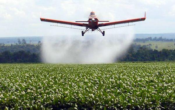 Primer Informe. En las investigaciones hechas en 2007 ya se había hablado de la relación de los agroquímicos y el cáncer.