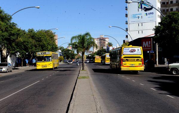 Miatello pidió buscar alternativas para evitar el paro de transporte.