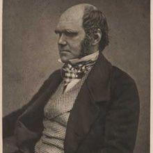 La obra completa de Darwin ya está en una página web