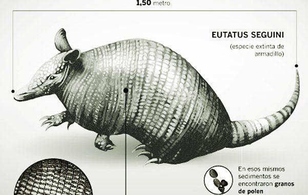 Dos investigadores hallan restos fósiles de más de 10 mil años