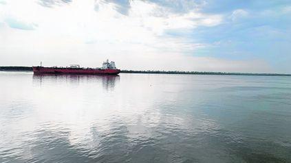 Plan de Manejo para el sector de islas y delta del Paraná