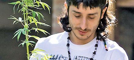 La Corte Suprema desincrimina el consumo personal de marihuana