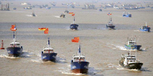 La flota pesquera china incurre en depredación sistemática de especies en peligro.