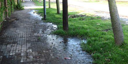 ¿Y la campaña contra el dengue?: aguas servidas en plena avenida Colombres