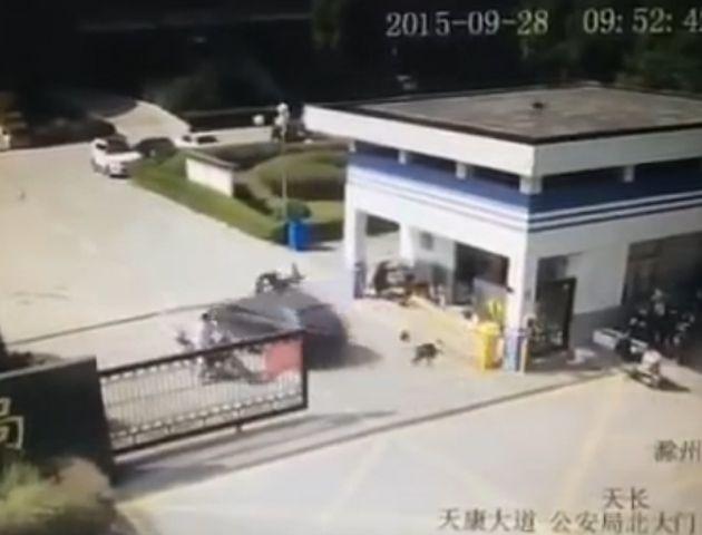 El auto que conducía el desaprensivo conductor ingresó a la seccional a toda velocidad.