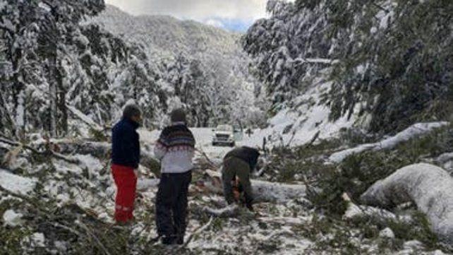 Ruta 40. El 23 de julio se derrumbó una parte de la montaña.