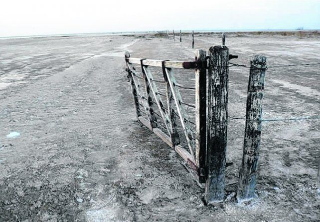 en peligro. Los campos inundables de Arequito y su zona.