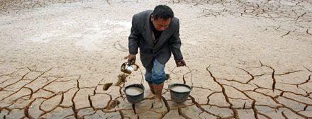 La raza humana se extinguirá si no enfrenta el calentamiento global