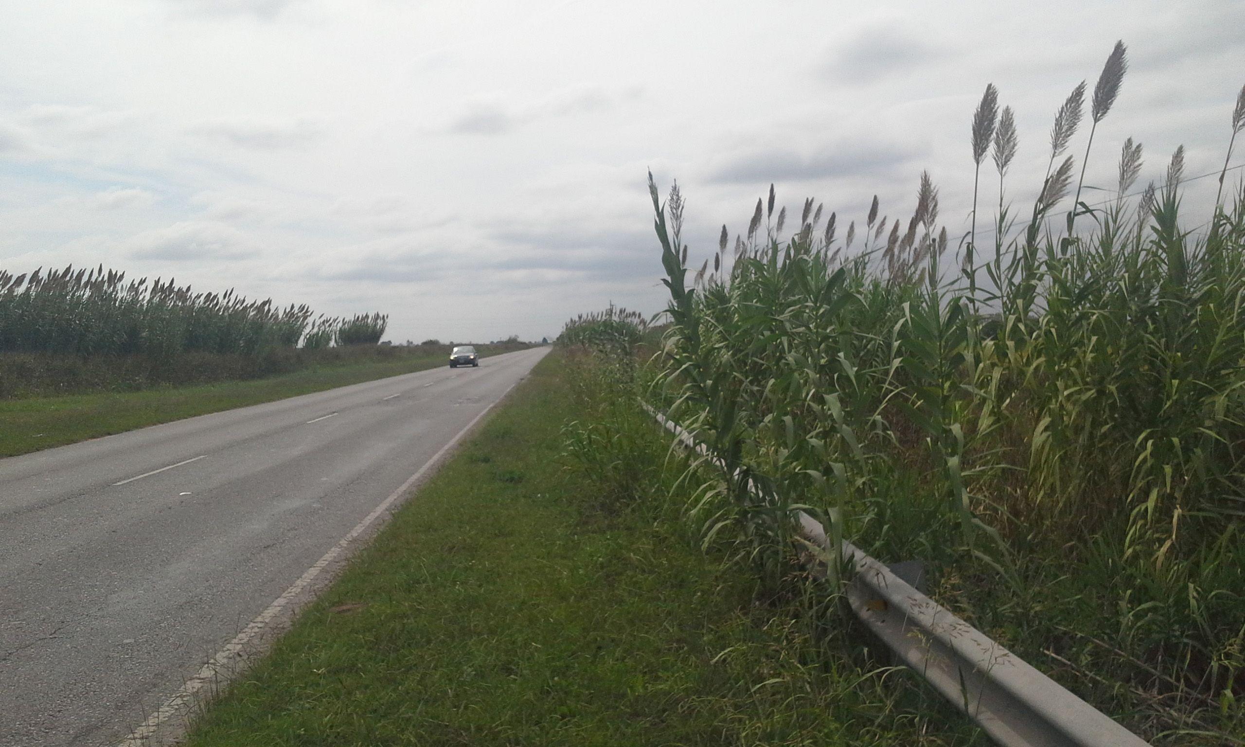 Vía de acceso. La ruta 26 conecta la autopista a Córdoba con Casilda.