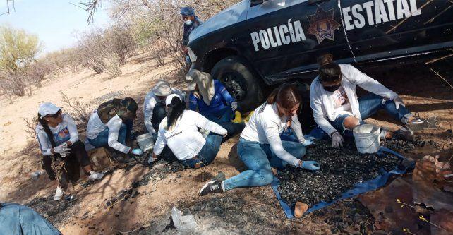 El colectivo al que pertenecía la víctima en su tarea de búsqueda de restos humanos.
