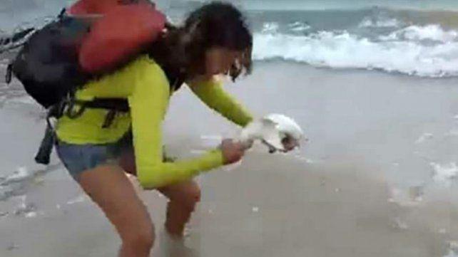 Un tiburón mordió a una turista que lo sacó del mar para tomarse una selfie
