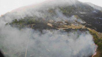 Amazonas. Los críticos acusan a la política ambiental de Jair Bolsonaro, que no protege el medio ambiente.