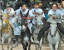 Después del Dakar, más de 10 mil personas presenciaron en Córdoba el Rally de Burros