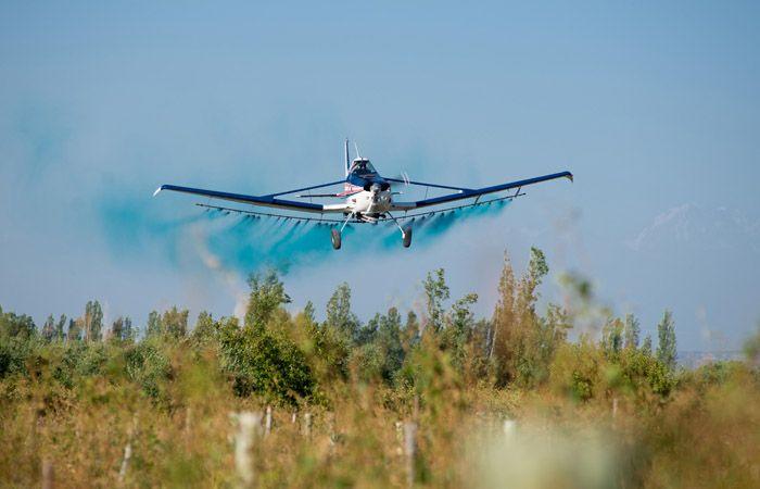 Los médicos cuestionan las fumigaciones aéreas cerca de zonas urbanas.