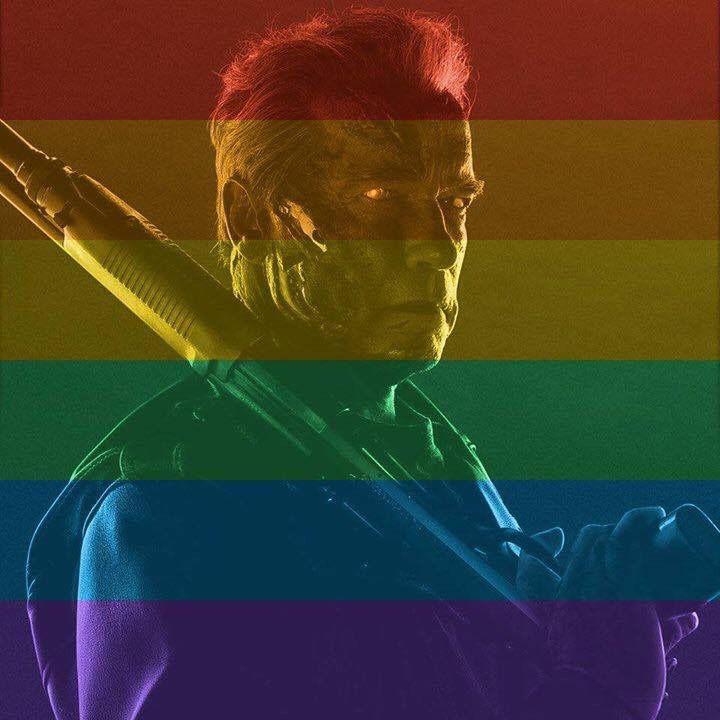 Schwarzenegger mostró su solidaridaridad con los homosexuales.