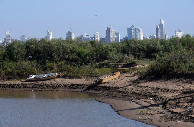 La duración de la bajante del Paraná causa preocupación por le perjuicio que causa a la flora y la faunta del delta.