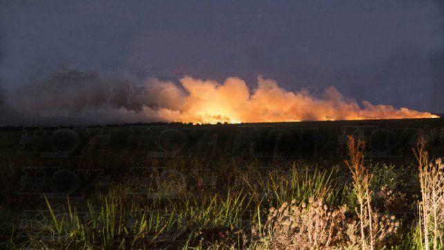 Una nube de humo y un fuerte olor invaden Buenos Aires por incendio en la reserva ecológica