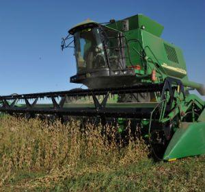 La perspectiva de los analistas locales es que los altos precios de la soja continuarán de la mano también de la fuerte demanda